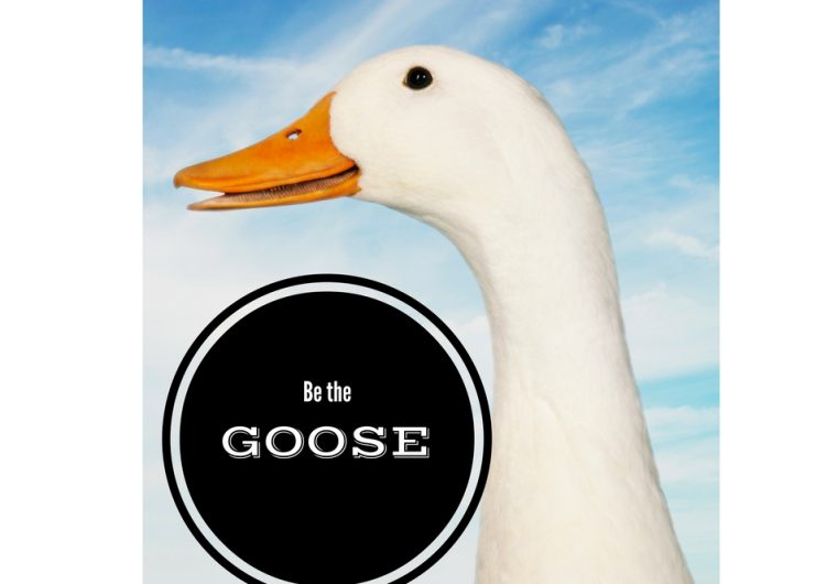 Convert a prospect by being a GOOSE.